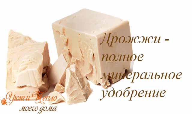 drozhzhi - polnoe mineral'noe udobrenie dlja cvetov