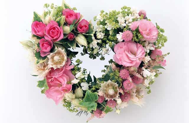 cveti pobediteljam