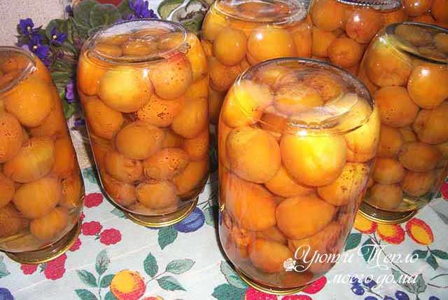 gotovyj kompot iz abrikosov