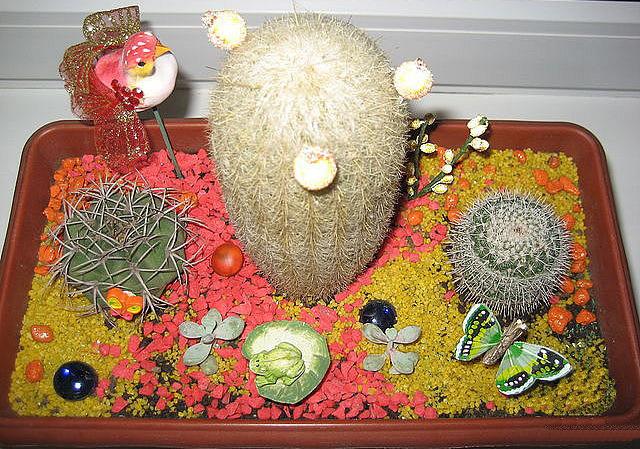 kompozicija s bol'shim kaktusom i babochkoj