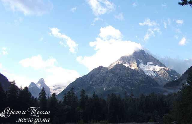 gora Psysh