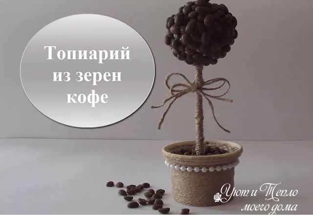 topiarij iz zeren kofe