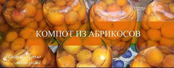 kompot iz abrikosov na zimu