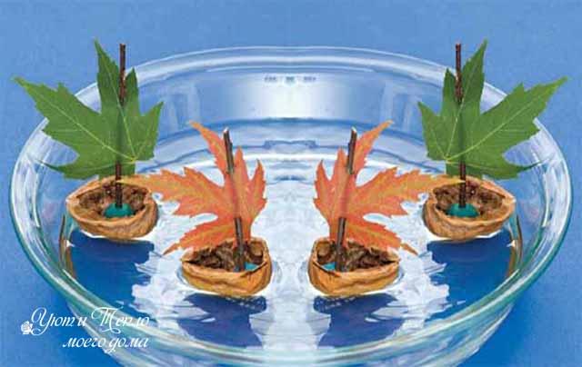 korabliki s osennimi listochkami