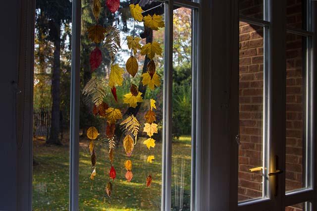 listja nad oknom