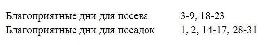 dni-v-yanvare