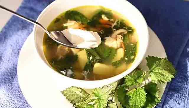 krapivnyj sup so smetanoj