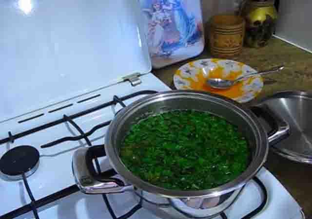 zelen' v shchavelevyj sup