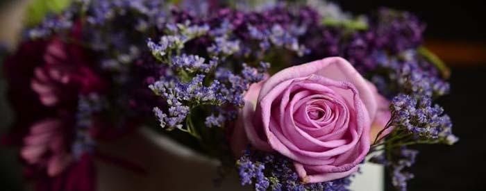 sirenevye czvety v podarok